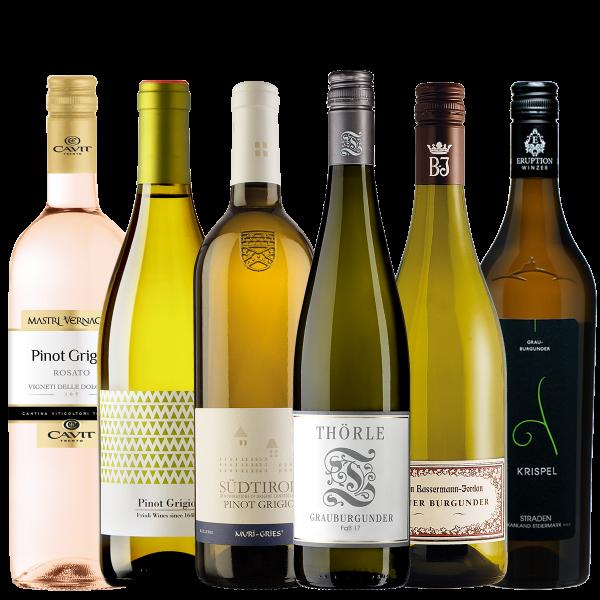 Pinot Grigio / Grauburgunder-Paket